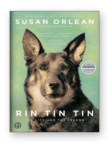 Rin Tin Tin on Scribd