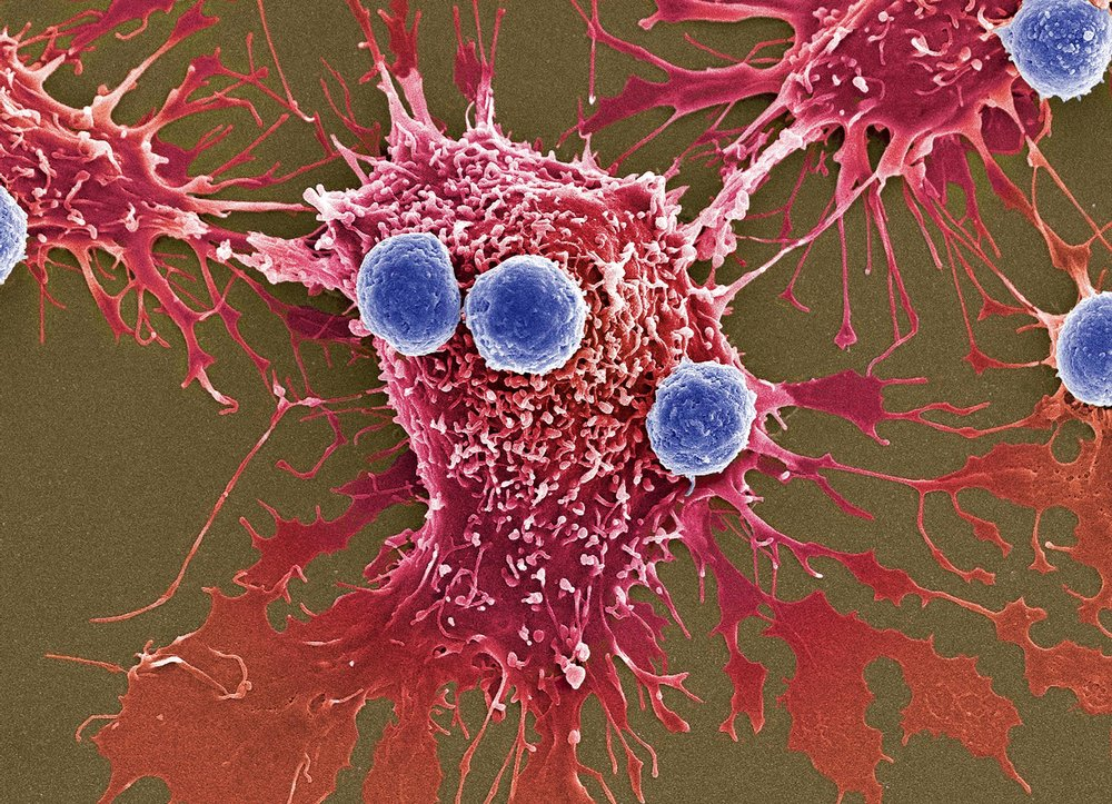 CancerLivingDrug.jpg