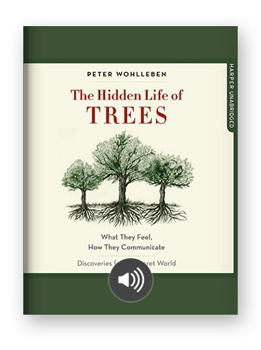 The Hidden Life of Trees by Peter Wohlleben on Scribd.png