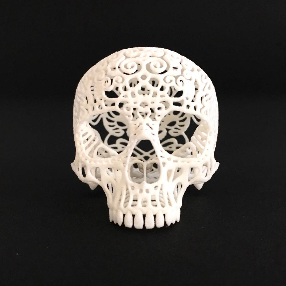 Joshua Harker 3D Printed Skull