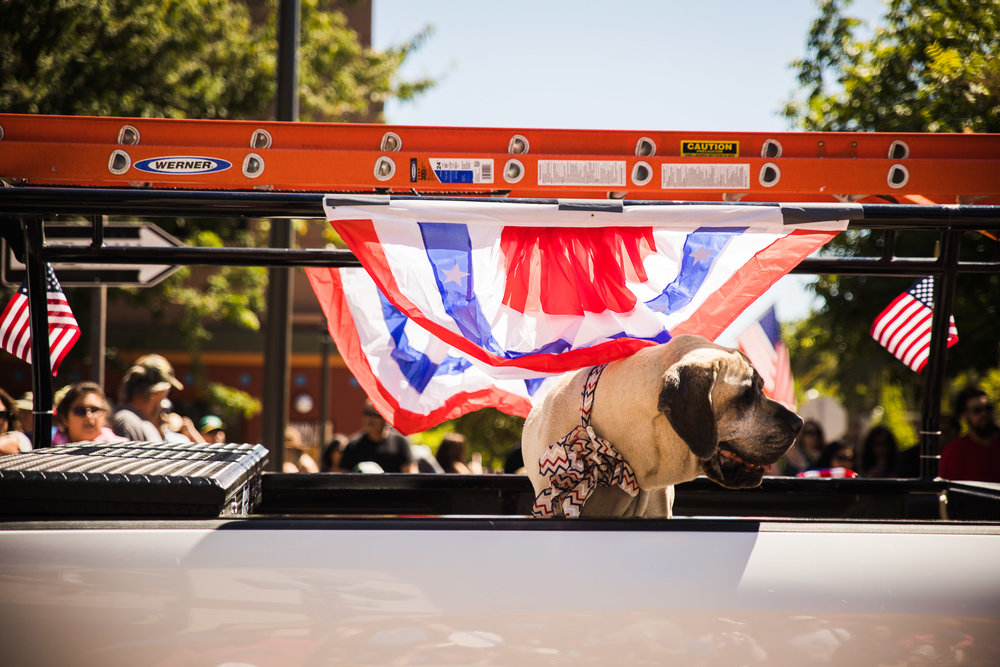 Archer_Inspired_Photography_Morgan_Hill_California_4th_of_july_parade-119.jpg