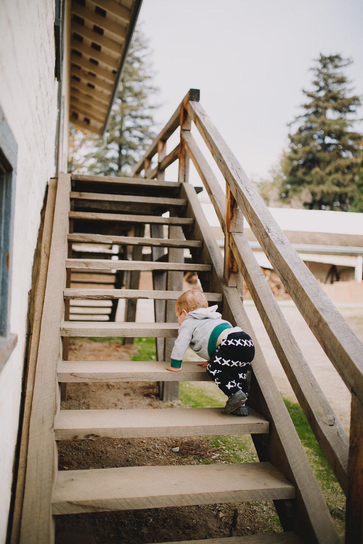 Archer Inspired Photography Family Road Trip Lifestyle Photos NorCal Sacramento South Lake Tahoe Reno Truckee Documentary Memories-23.jpg