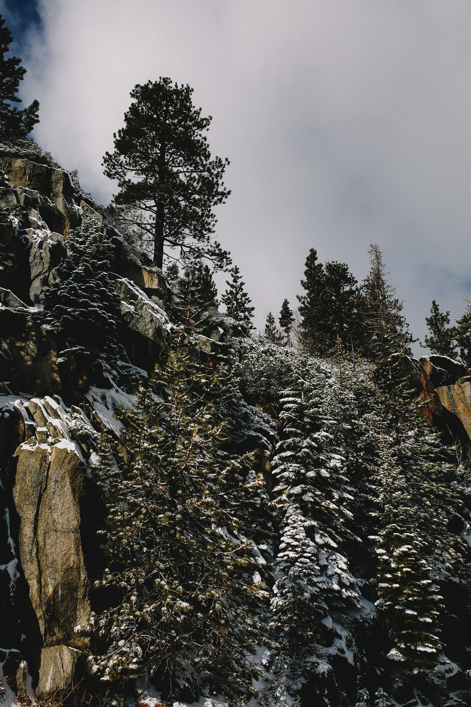 Archer Inspired Photography Family Road Trip Lifestyle Photos NorCal Sacramento South Lake Tahoe Reno Truckee Documentary Memories-57.jpg