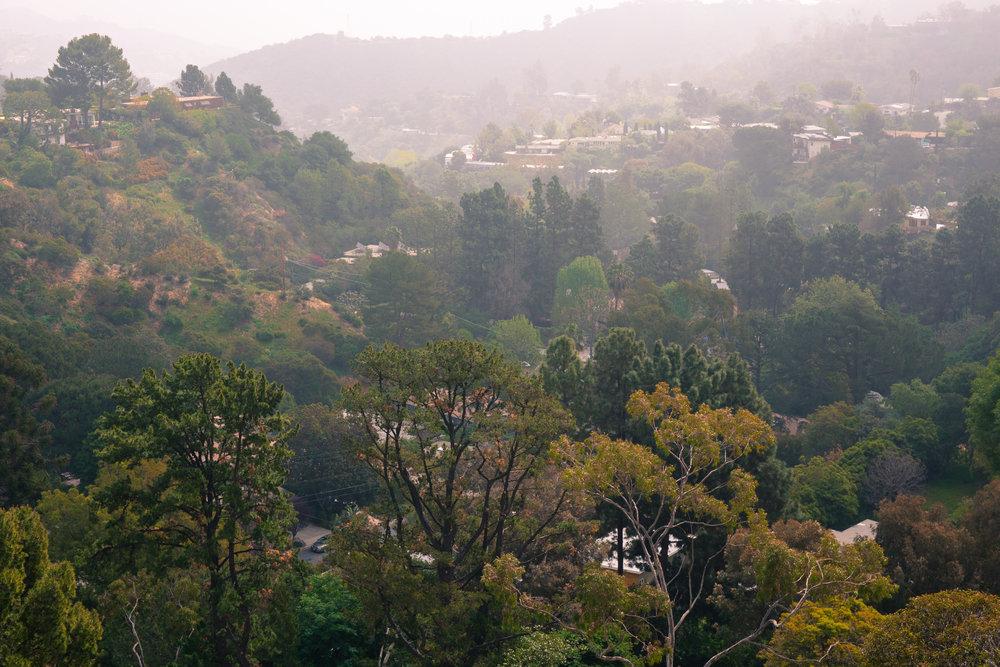 Above Wonderland Park