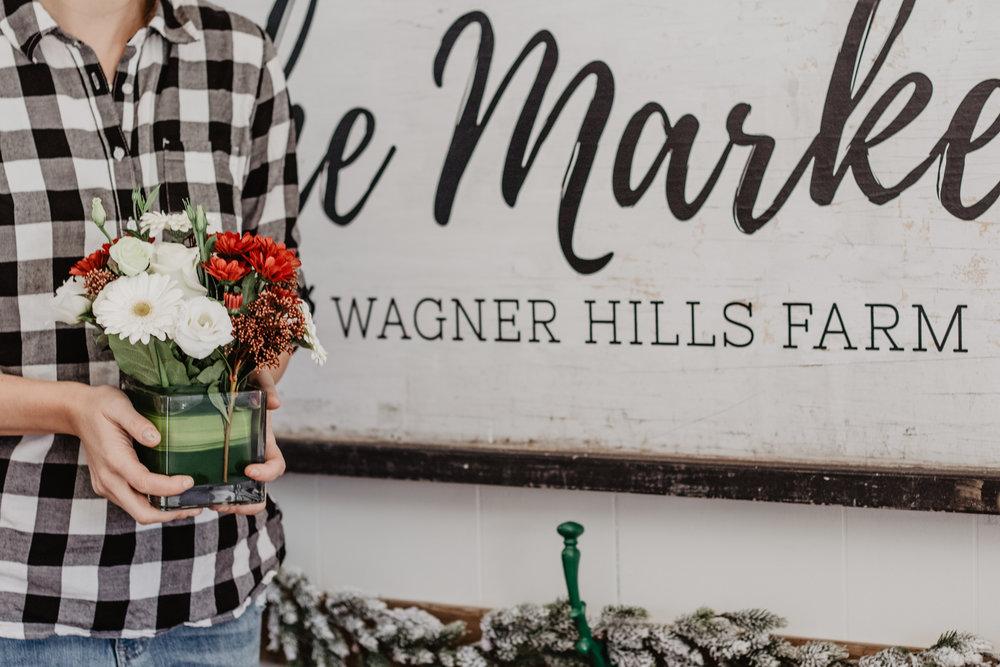 wagner hills-3.jpg
