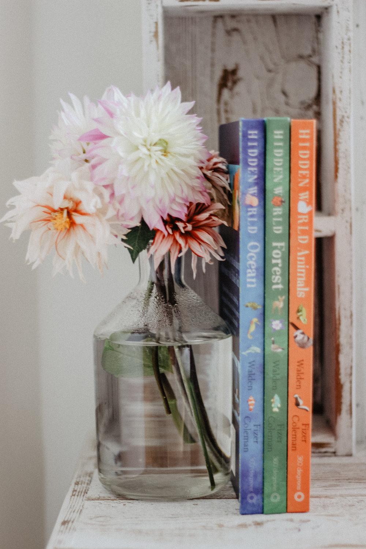 PGC Books-1.jpg
