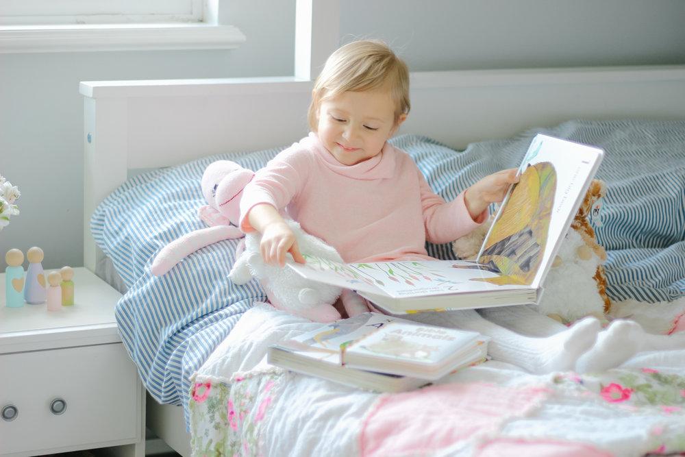 DK Books-1.jpg