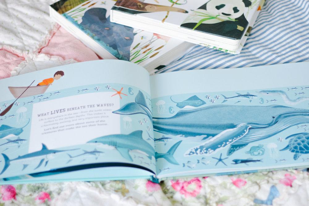 DK Books-6.jpg