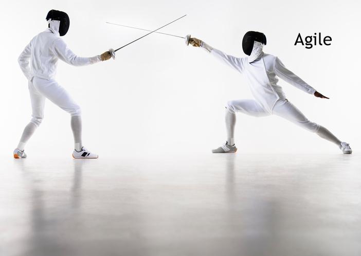 fencers01.png