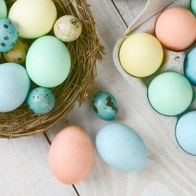 Natural Colored Eggs from  Dagmar's Home