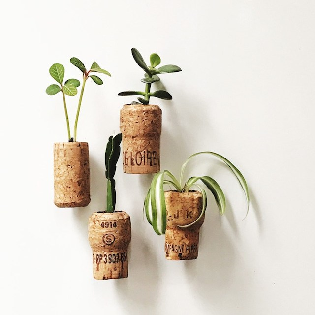 Cork Magnet Planters from Nifty Thrify Things