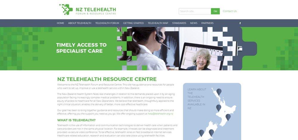 Telehealth website.JPG