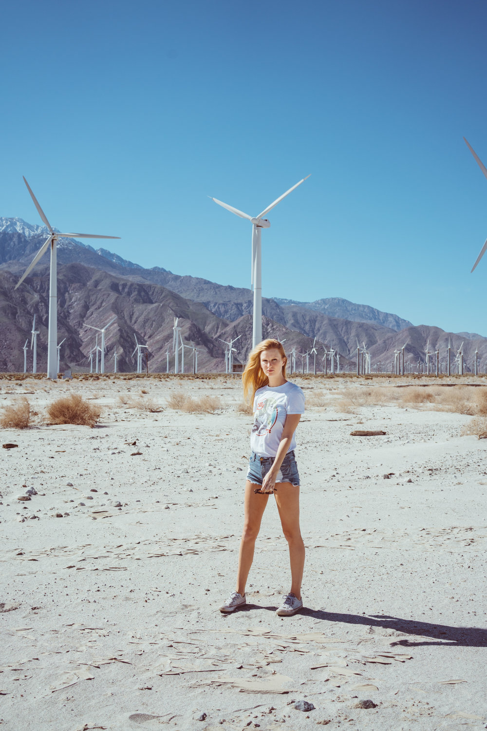 Palm Springs Windmills