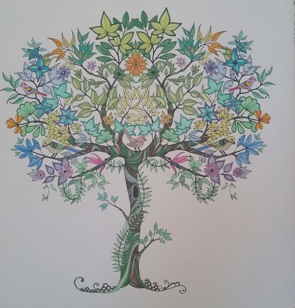 Love this adult colouring in craze!