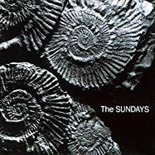 Sundays.Reading.jpg