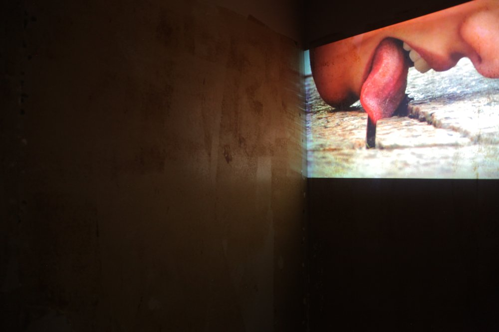 Mitra Saboury, video projection, installation view, 2015