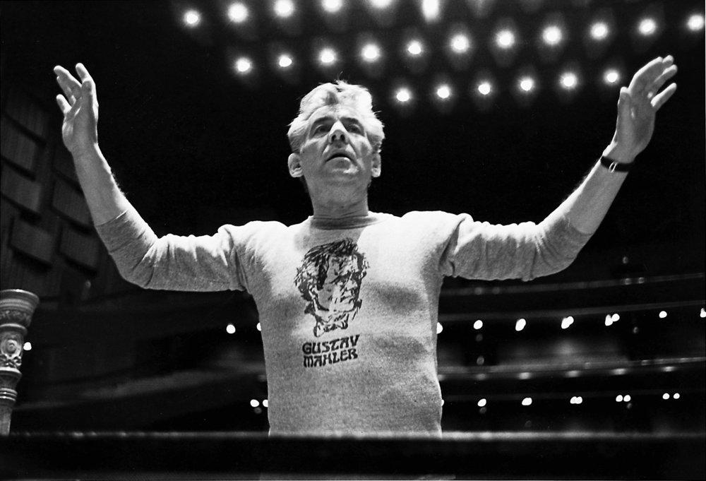 BernsteinMahler-sweatshirt._V399347360_.jpg