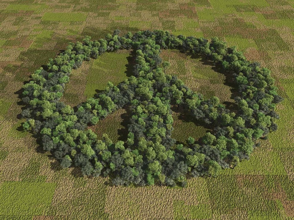 peace-sign.jpg