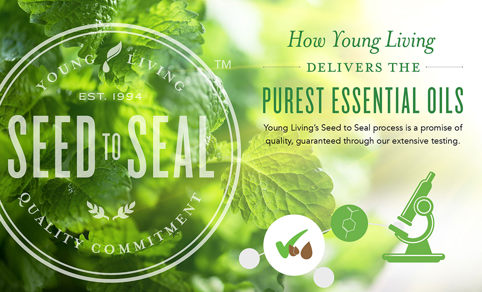 seed to seal promise