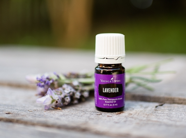 Lavender naturally supports your Endocrine system. It also supports your body's ability to produce melatonin for healthy sleep patterns.