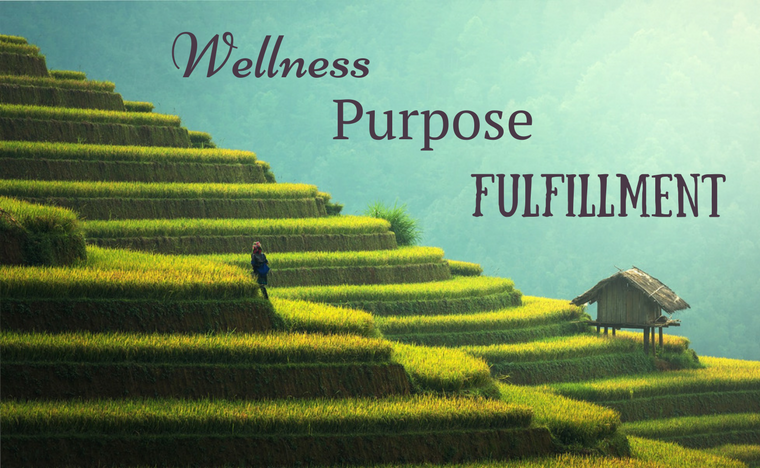 wellness purpose fulfillment