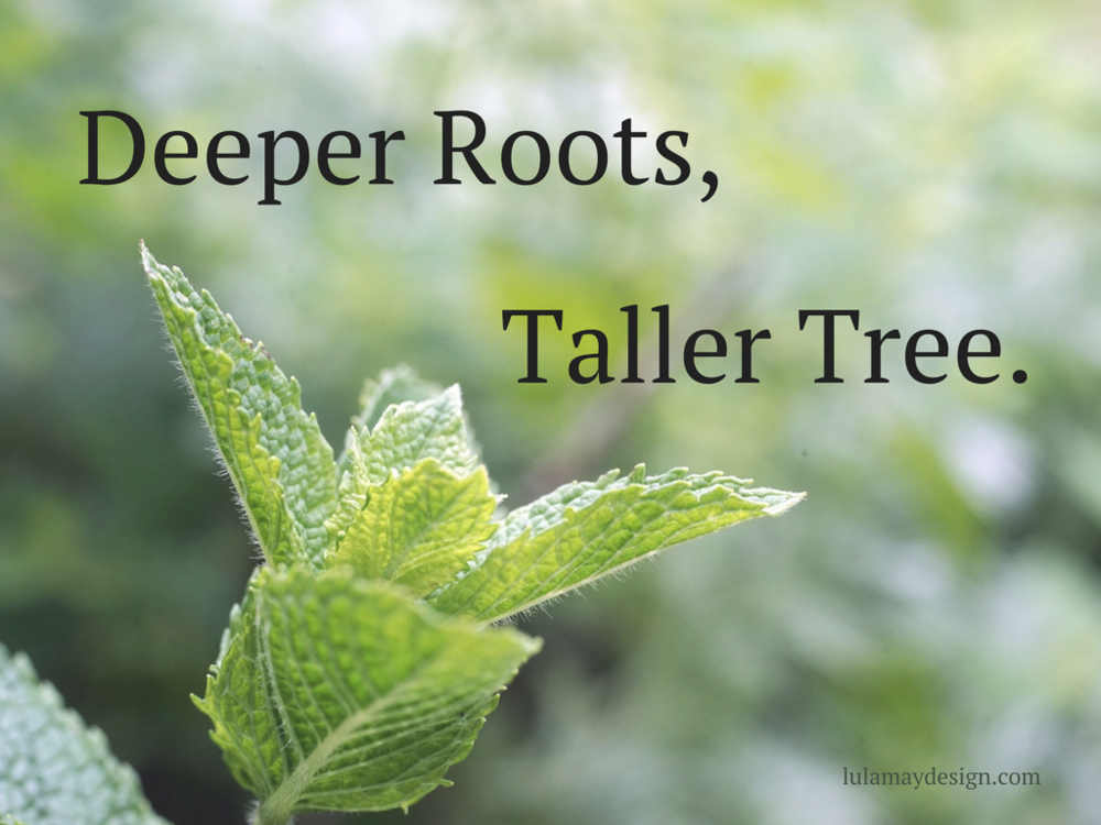 August Deeper Roots Taller Tree!.png