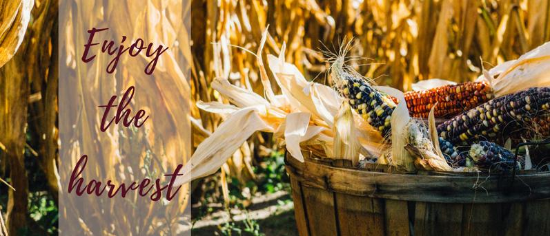 Enjoy the harvest.png