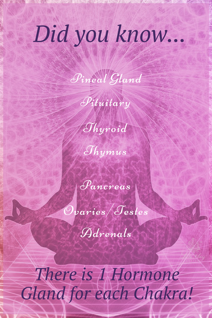 Endocrine System and Chakras.png