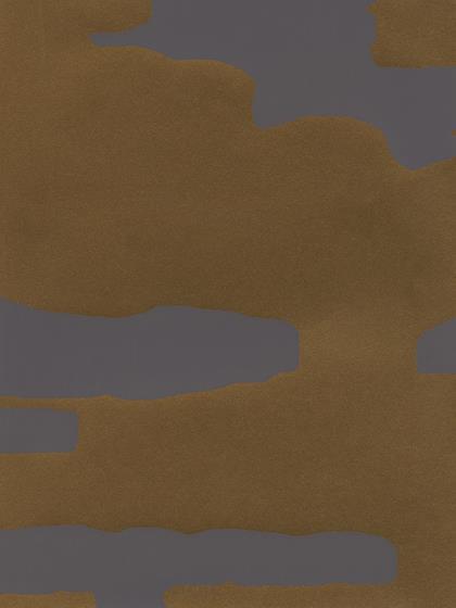 DESERT STORM WP6012