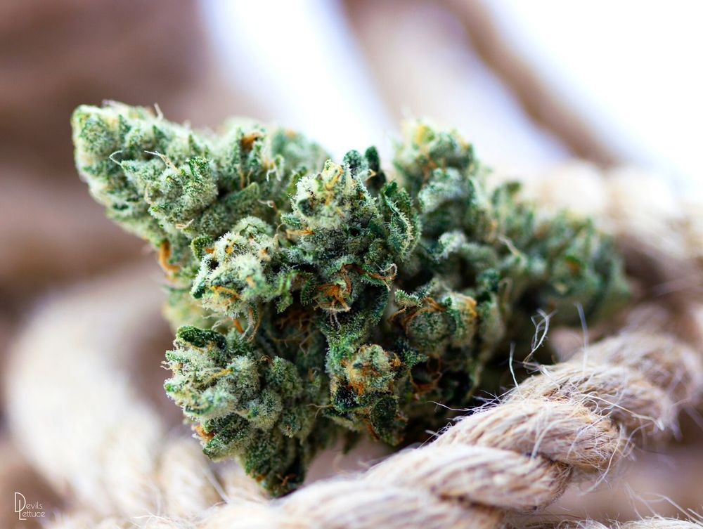 Hemp Rope by Devil Lettuce PH (2015) - Prices vary by size