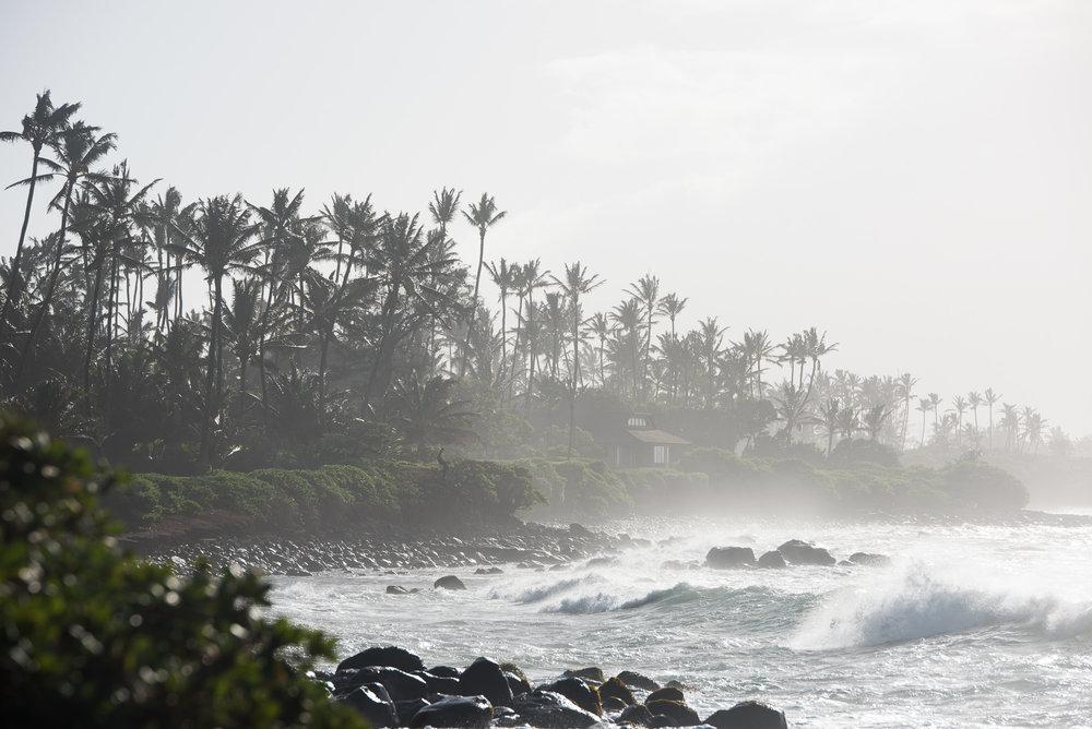 Hawaii2017_Maui-87.jpg