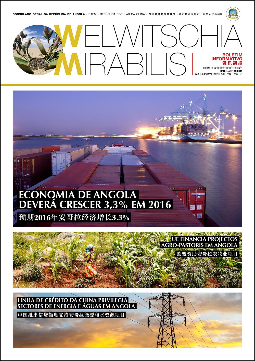 BI January 2016-Cover.jpg