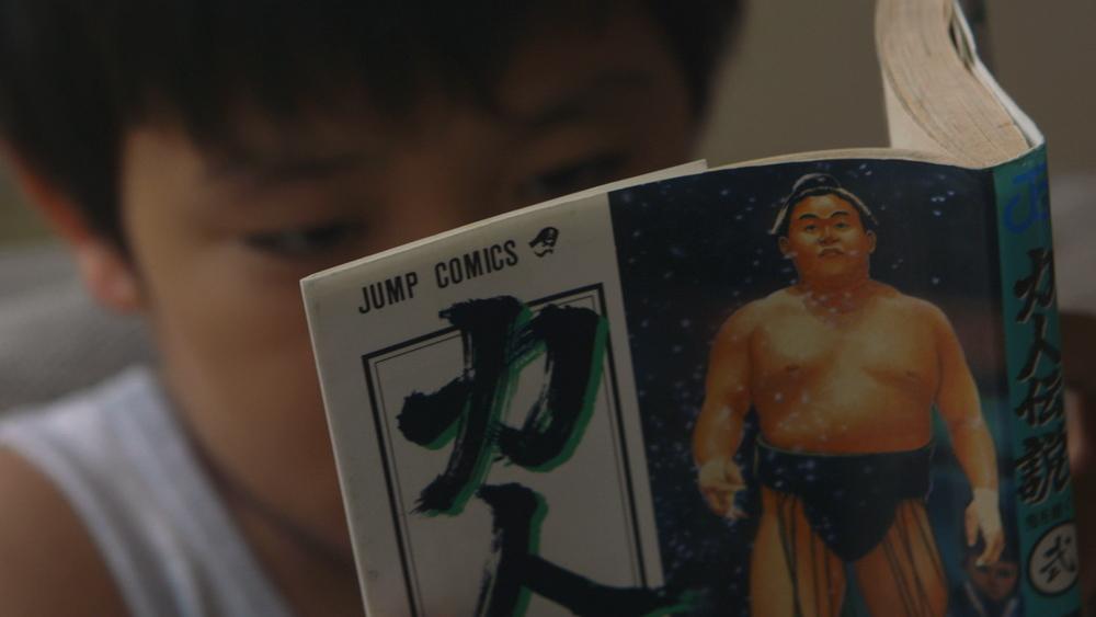 Chikara_book.jpg