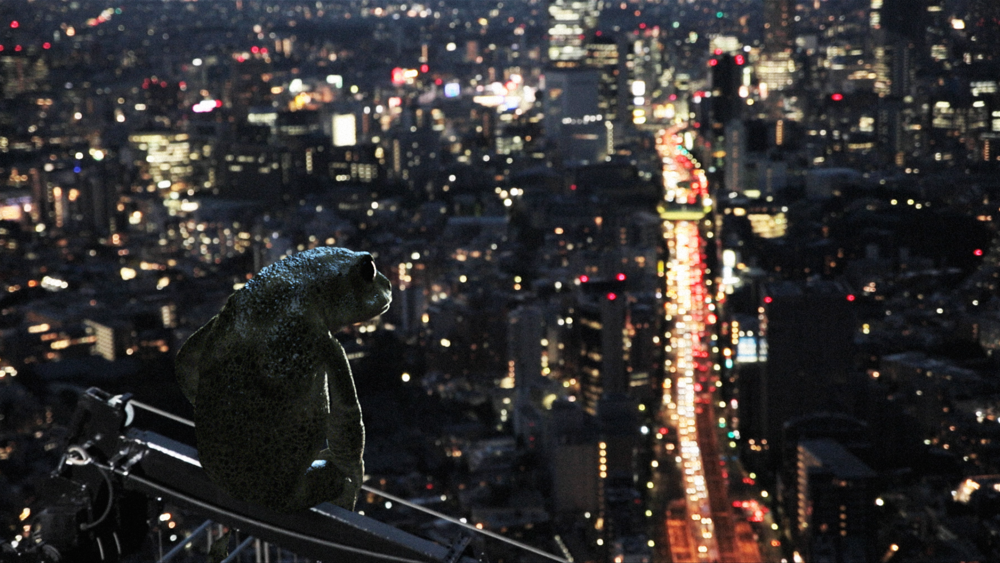 DreamingMurakami_IDFA_Still_1_Frog.png