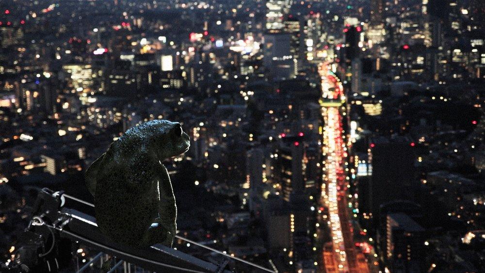 DreamingMurakami_IDFA_Still_1_Frog.jpg