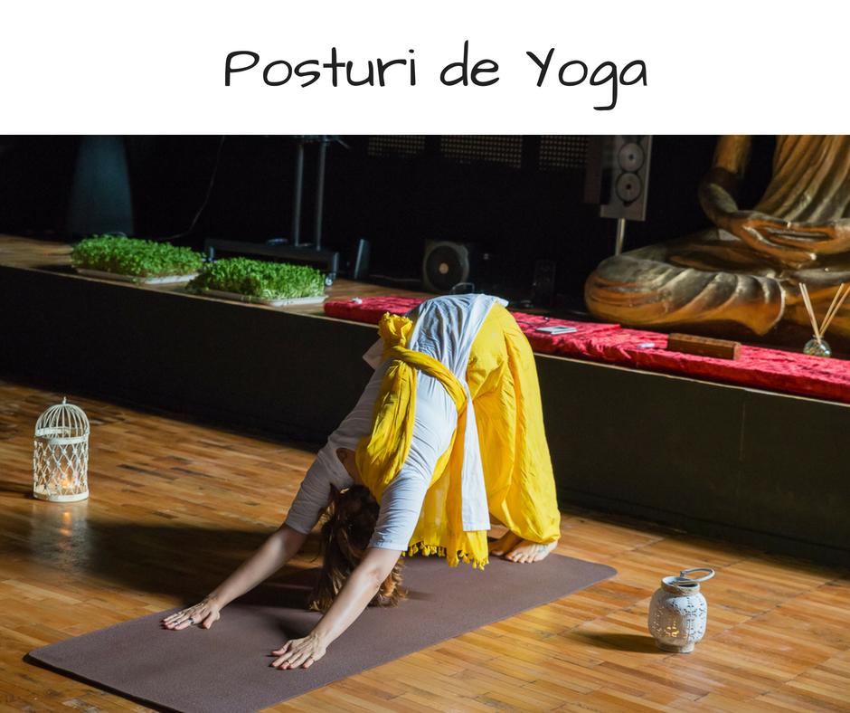 posturi yoga, yoga bucuresti, asane, yoga vindeca