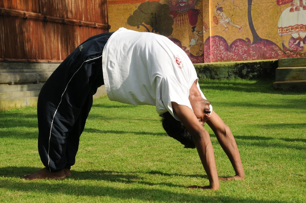 asana, yoga bucuresti, calatorie india