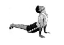 yoga pentru incepatori, salutul soarelui beneficii, salutul soarelui efecte, salutul soarelui contraindicatii, salutul yoghin al soarelui, salutul soarelui in yoga