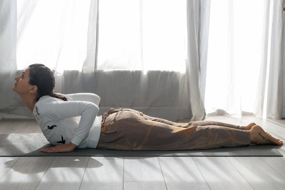 lectii de yoga pentru incepatori pozitii de yoga