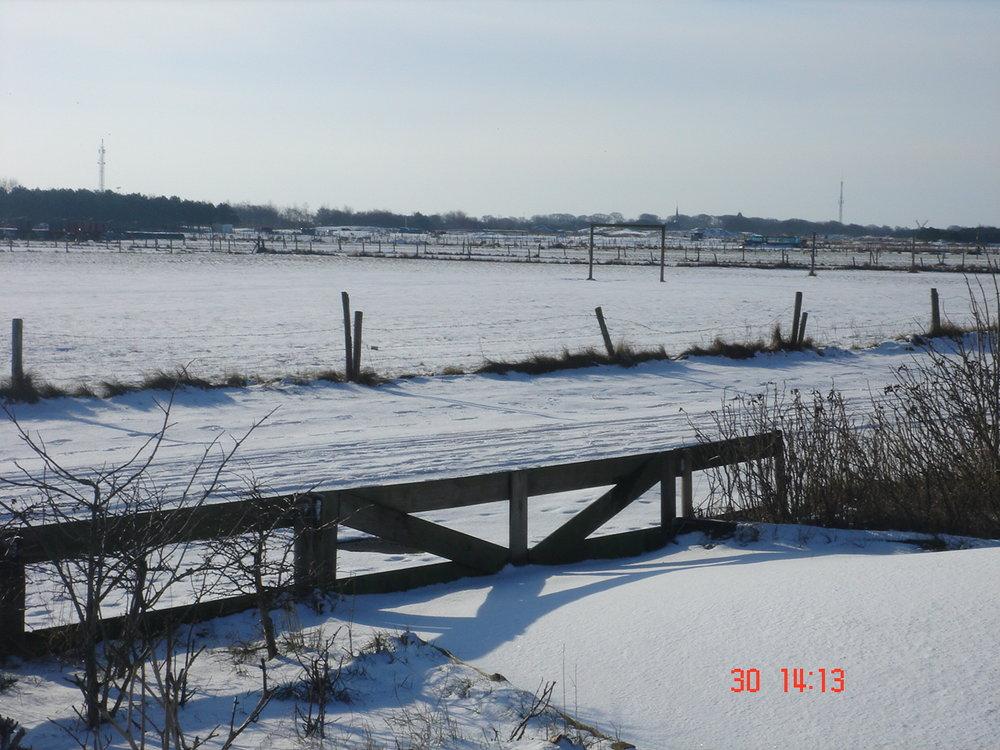 laatste fotos tot jan 2010 205.JPG