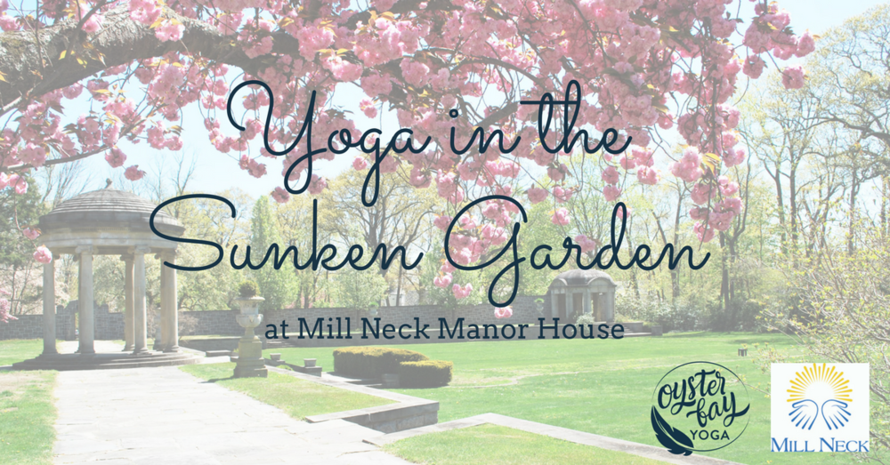outdoor yoga oyster bay