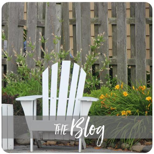 the blog_home.jpg