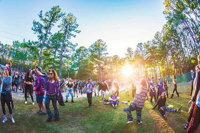 Excited to chase those perfect #HulaweenFL moments with you back home 💜 (📸: @liveeditslab)