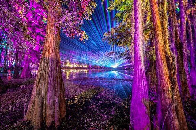 Preparing our minds to take in all the magic. Are you? #HulaweenFL (📸: @fraxior)