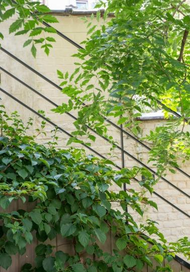 tuinarchitect_steyaert_brussel_tuintrap_fotografie www.Maaykederidder.com