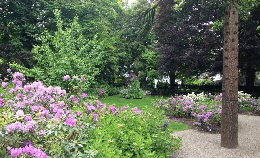 paysagiste_steyaert_bruxelles_jardin