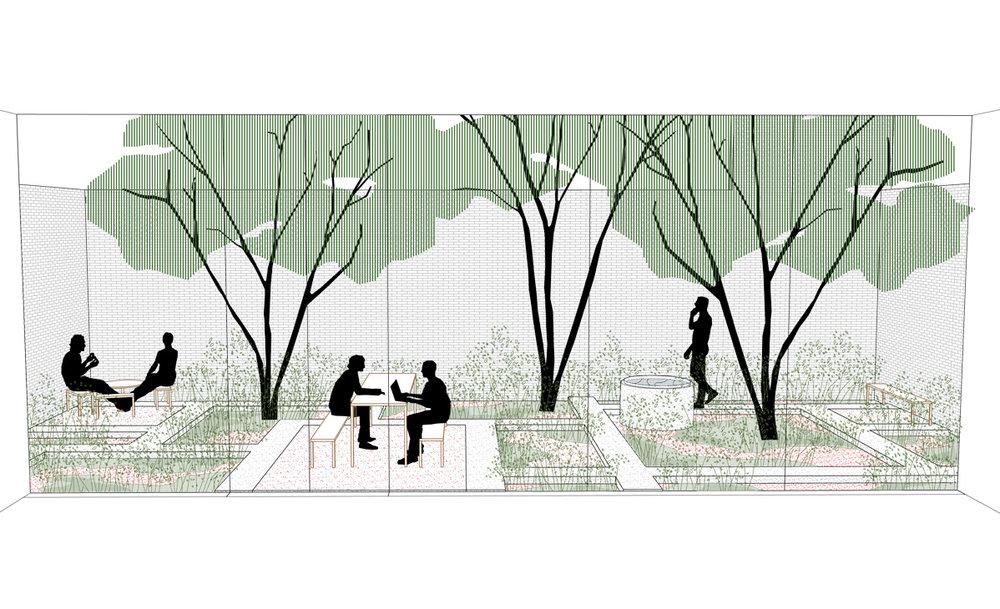 tuinarchitect_steyaert_brussel_caanarchitecten_sophora_meerstammig_gepolierdebeton