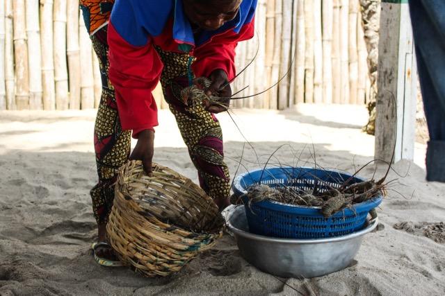Ghana-11.jpg