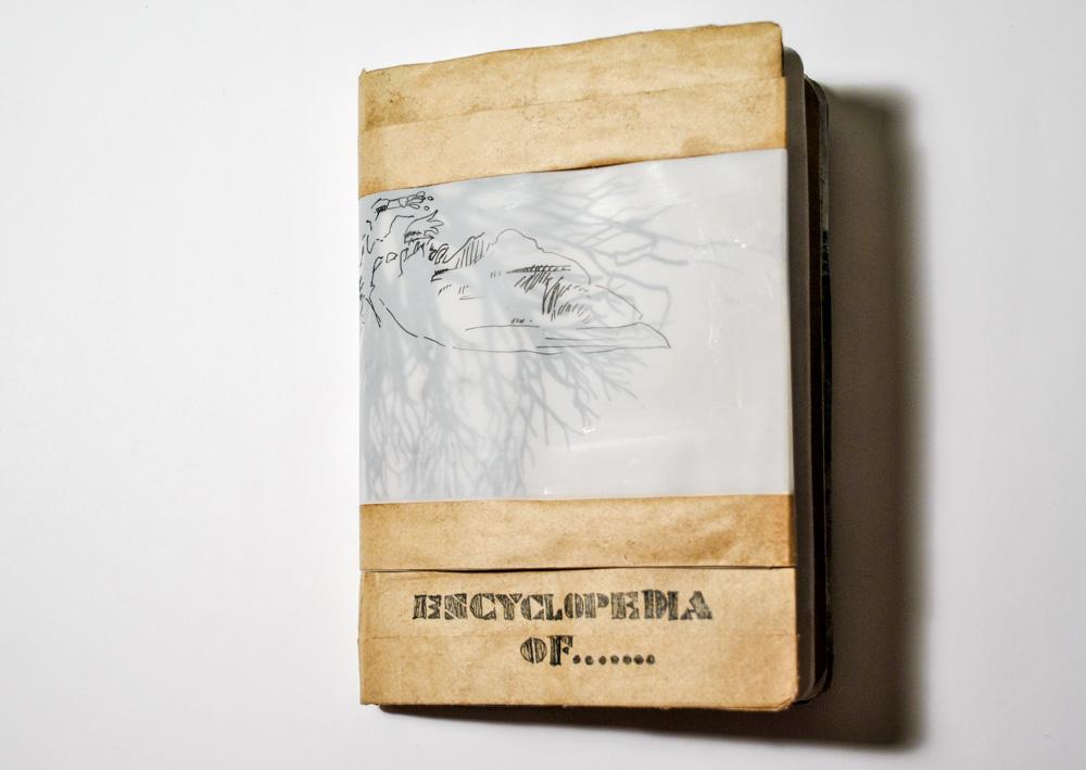 Encyclopedia Of....