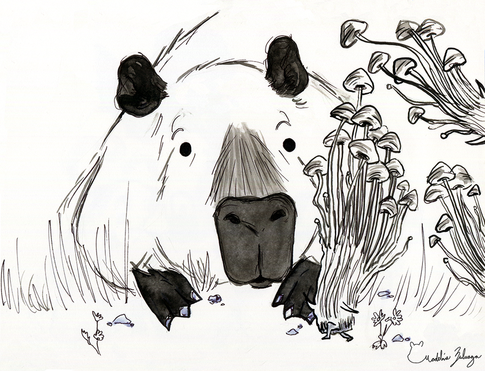 Madeline-Zuluaga-Inktober-5--Capybara-and-the-case-of-the-curious-mushroom.png